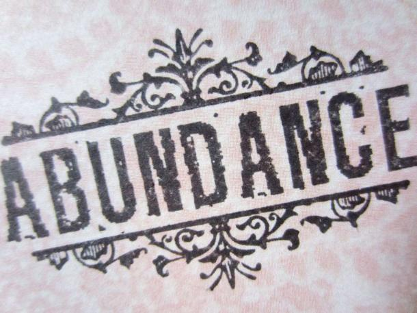 AbundanceJournal_4
